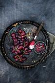 Trauben-Rosmarin-Kompott