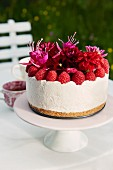 Cheesecake with raspberries and edible flowers