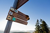 Signposts in the Bavarian Forest National Park, Germany