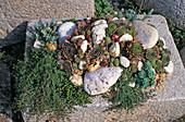 Mini-Steingarten im Steintrog aus Granit