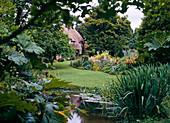 Garten mit Teich UND GUNNERA CHINENSIS