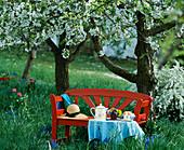 Rote Bank und Frühstückstisch unter blühender Kirsche