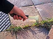 Plattenfugen mit Fugenkratzer säubern