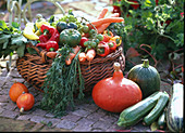 Vegetable basket, Capsicum (paprika), Daucus (carrots)