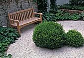 Hinterhof als Atriumgarten