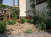 Vorgarten mit Rollkies UND Bepflanzung