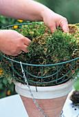 HANGING BASKET Bepflanzen: Korb mit Moos Oder