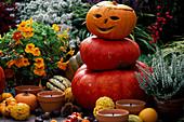 Halloween, little Pumpkin man on the terrace