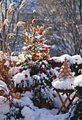 Weihnachtsbaum mit ÄPFELN (IN Wachs Getaucht) ORANGENSCHEIBEN