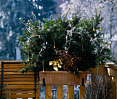 Balkonkasten mit adventlichen Schmuck