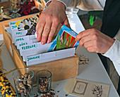 Karteikasten mit Samentüten, die nach Aussaatmonaten sortiert sind