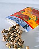 Samentüte mit Kapuzinerkresse