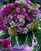 Erigeron / Feinstrahlaster, Centranthus / Spornblume