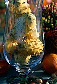Glas mit Kiwano-Früchten