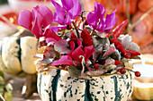 Zierkürbis als Vase: Cyclamen (Alpenveilchen), Hydrangea-Blätter