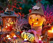 Halloween: Ausgehöhlter Kürbis, Hagebutten als Augen, Peperonia als Zunge, Callu