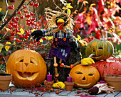 Halloween, funny hollowed out pumpkin heads with ravens