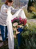 Herbstpflanzen vor Frühfrösten mit Vlies abdecken