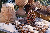 Kranz aus Zapfen, Terracottatöpfe und Zapfen, Schnee