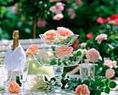 Etagere aus zwei Glasschalen mit historischer Rose 'Abraham