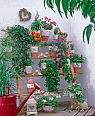 Anlehnregal für die Wand mit Sommerblumen
