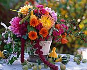 Dahlia / Dahlien, Amaranthus / Fuchsschwanz, Cucurbita / Zier-