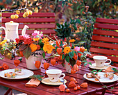 Tischdeko:Physalis / Lampionblume und Andenbeere, Rosa / Rosen, Calendula / Ringelblum