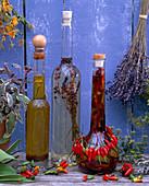 Kräuteröl, Salvia / Salbei, Capsicum frutescens / Chili, Lavandula / Lavendel, T