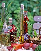 Kräuteröle: Rosmarinus / Rosmarin, Capsicum / Chili und Paprika,