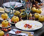 Cydonia / Apfelquitten, Malus 'Evereste'/ Zieräpfel
