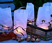 Butterbrottüten als dekorierte Hülle für Windlichter, Capsicum / Zierpaprika, Nig