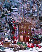 Gaultheria 'Winter Pearls' / Scheinbeere, Calluna / Heide,