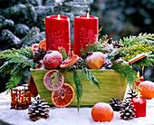 Chamaecyparis / Scheinzypresse, Citrus / Grapefruitscheiben u. Orangen, Punica / Gr