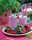 Fragaria / Erdbeeren, Rubus / Himbeeren und Brombeeren,