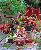 Fragaria strawberries and wild strawberries, jars with homemade jam