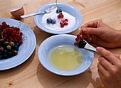 Gezuckerte Früchte: Step 1/2. Ribes / Johannisbeeren, Vaccinium / Blaubeeren mit