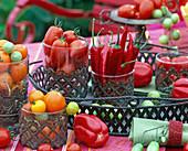 Lycopersicon / Tomaten, Capsicum / Peperonies