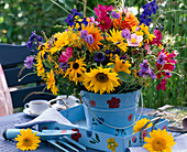 Helianthus / Sonnenblumen, Dahlia / Dahlien, Rudbeckia / Sonnen-