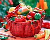 Roter Korb mit Capsicum / Paprika und Peperonies