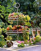 Etagere mit Vitis / Weintrauben, Pyrus / Birnen, Prunus / Pfirsiche, Aprikosen,