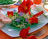 Eßbare Deko: Hemerocallis / Taglilien