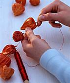 Physaliskette: 1/2. Physalis (Lampions) mit rotem Draht zur Kette wickeln