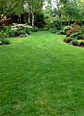 Rasenfläche zwischen Beeten
