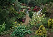 Rhododendron - Garten im Frühling mit Wasserfall und Teich, Gartenazaleen, Magnolia (Tulpenmagnolie), Koniferen, Hosta (Funkie), Kiesweg