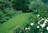 Beete mit Rosa 'Maria Mathilda' (Floribundarose) mit starkem Duft, Geranium (Storchschnabel), Delphinium (Rittersporn) , Pyrus salicifolia (Weidenblättrige Birne), Rasenweg führt zur Bank im Schatten unter Baum