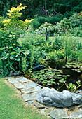 Teichbecken mit Nymphaea (Seerosen) und Sumpfpflanzen, Staudenbeet mit Acer shirasawanum 'Aureum' (Goldahorn), liegende Figur als Deko