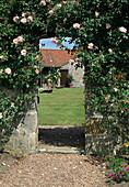 Rosa 'Paul Transon' (Kletterrose), remontierend mit gutem Duft, wächst an Mauer, Blick auf Landhaus, Hund liegt auf dem Rasen