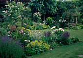 Rosa (Rosen), Salvia nemorosa (Steppensalbei, Ziersalbei), Alchemilla mollis (Frauenmantel), Lavandula (Lavendel), Lychnis (Vexiernelke), Geranium (Storchschnabel), Lonicera heckrottii (Geissblatt) wächst an Mauer