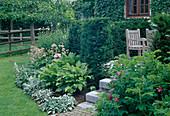 Sitzplatz eingefaßt mit Hecke aus Taxus baccata / Eibe, Beet mit Hosta / Funkie, Stachys byzantina / Wollziest, Astrantia / Sterndolde, Rosa rugosa / Apfelrose, Kartoffelrose