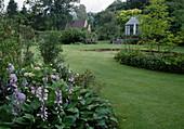 Hosta (Funkie), Hydrangea (Hortensie), Magnolia (Magnolie), Blick über Rasenfläche auf Sommerhaus